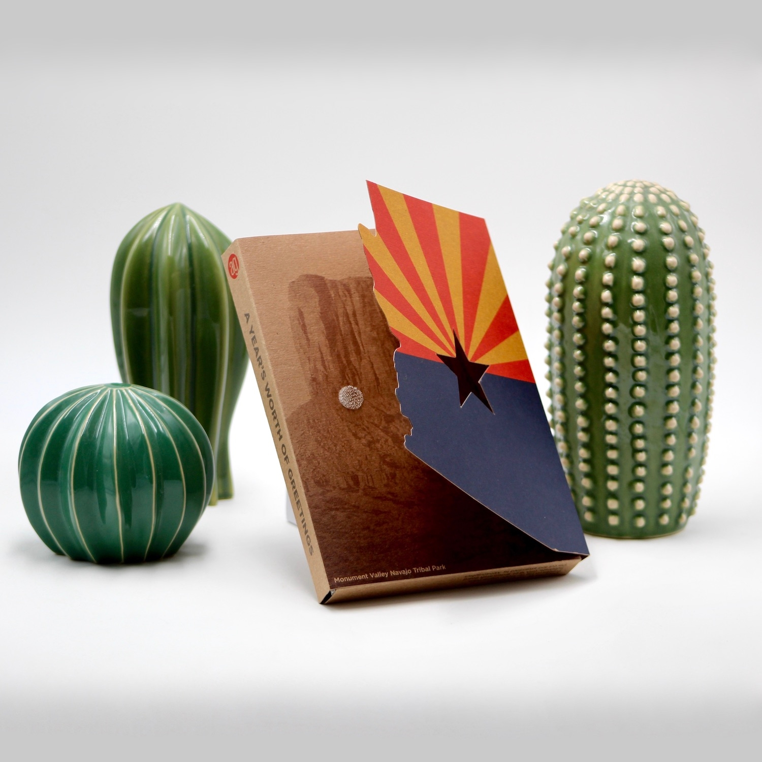 Cactus and book